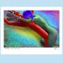 C011 Inflatable Tube Man, Nude PRINT